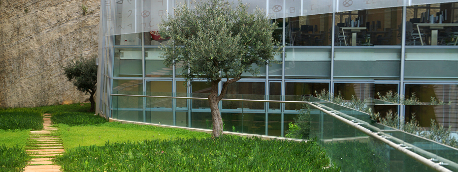 Library's Garden and Pathway in Byblos Campus